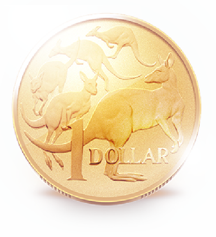 Image of a dollar coin